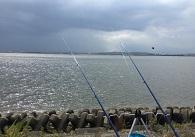 投げ釣り画像