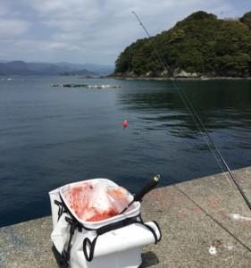 フカセ釣り画像
