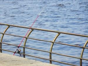 ちょい投げ釣り画像